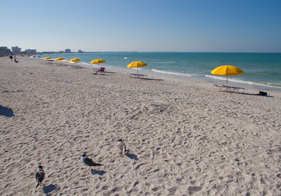 St. Pete Beach Weddings, St. Pete Beach Florida